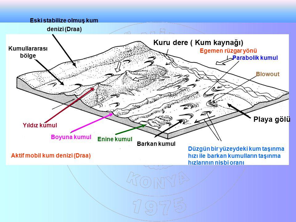 Eski stabilize olmuş kum denizi (Draa)
