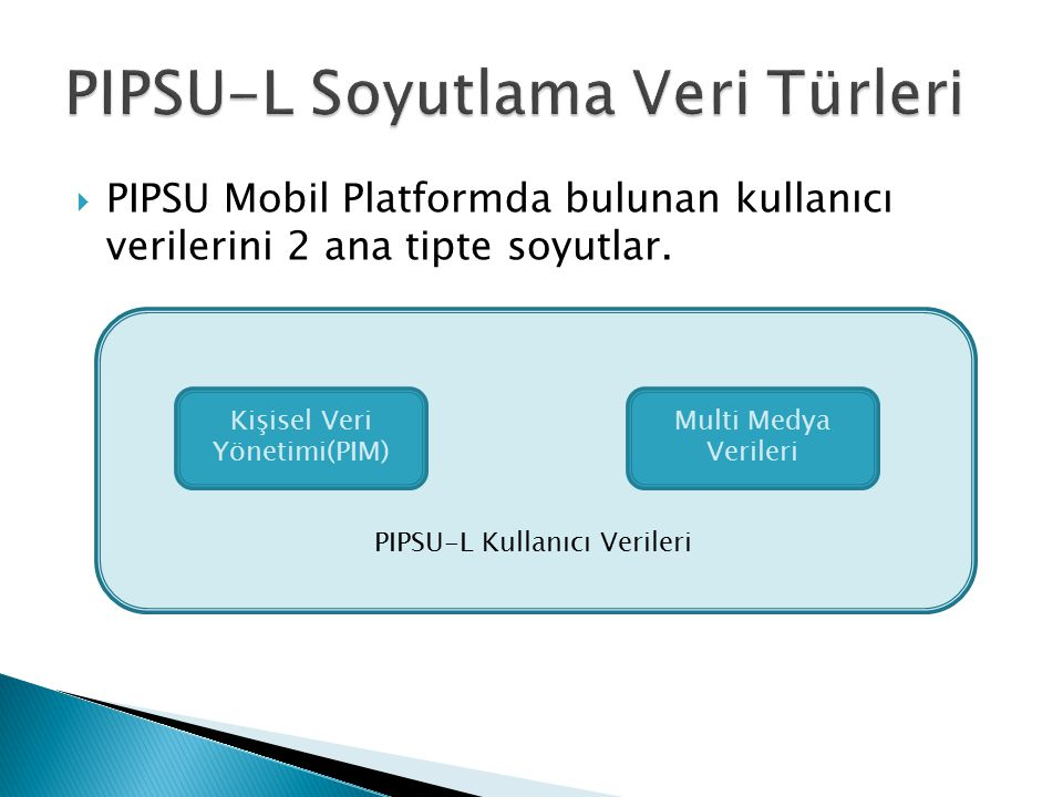 PIPSU-L Soyutlama Veri Türleri
