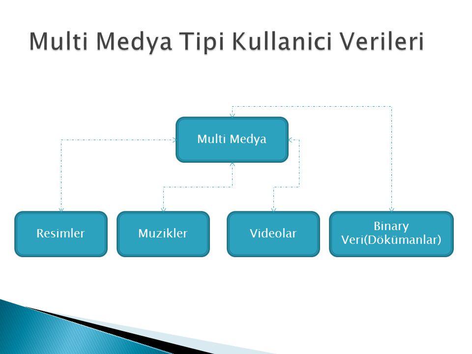 Multi Medya Tipi Kullanici Verileri