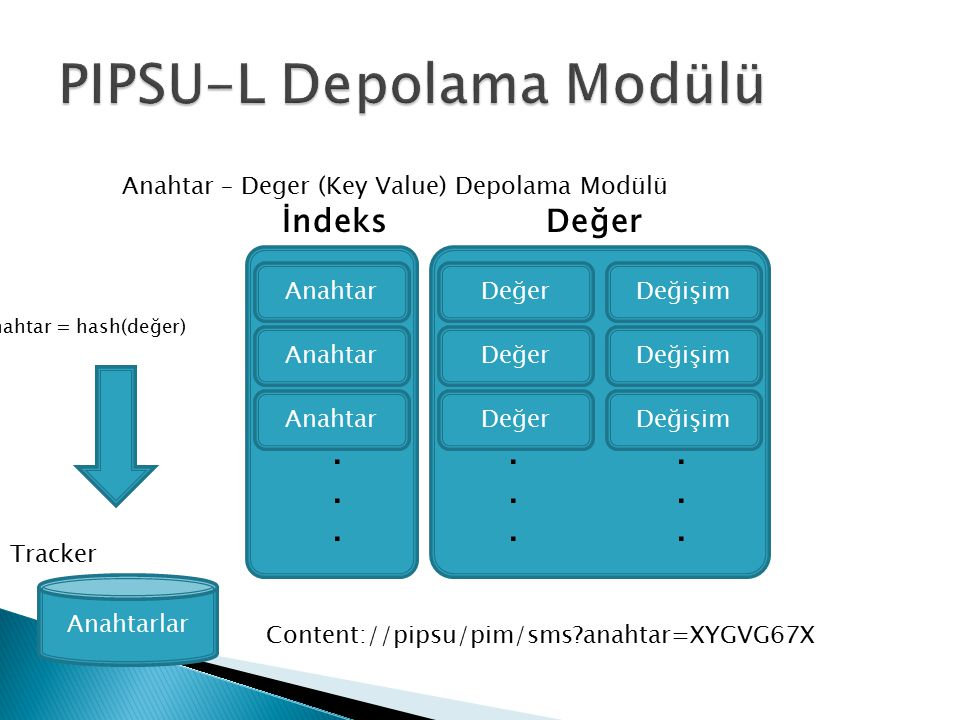 PIPSU-L Depolama Modülü