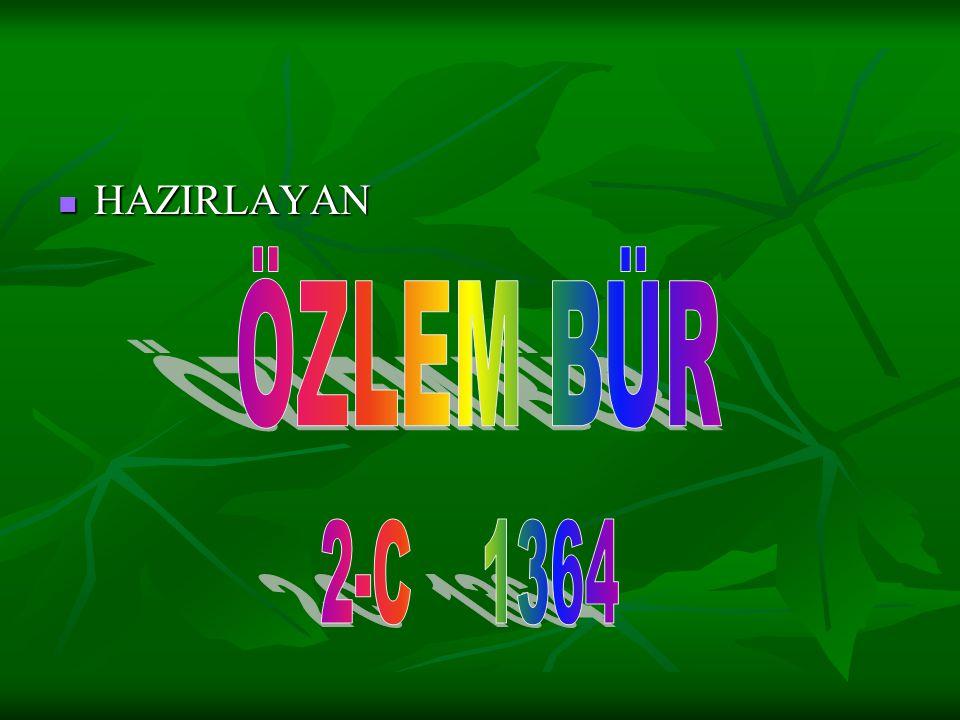 HAZIRLAYAN ÖZLEM BÜR 2-C 1364
