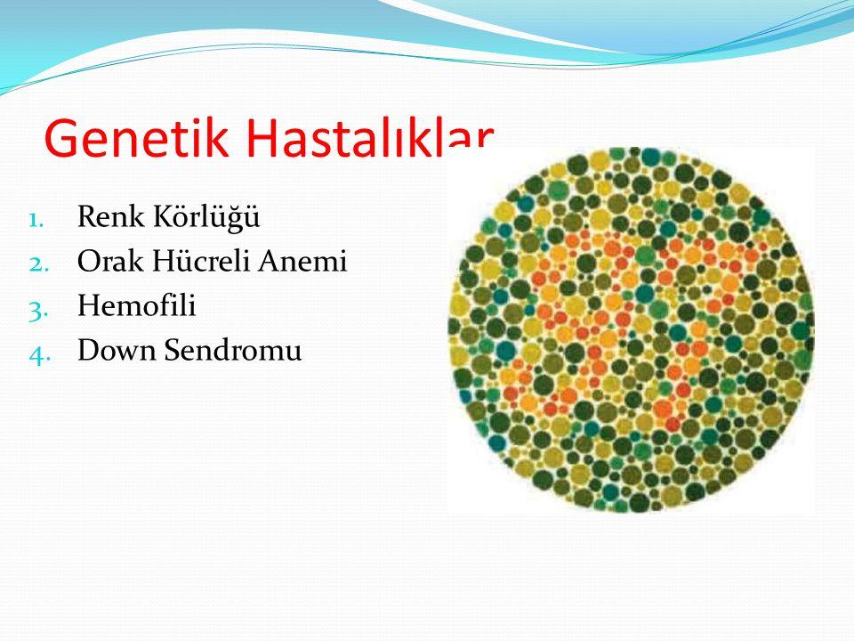 Genetik Hastalıklar Renk Körlüğü Orak Hücreli Anemi Hemofili