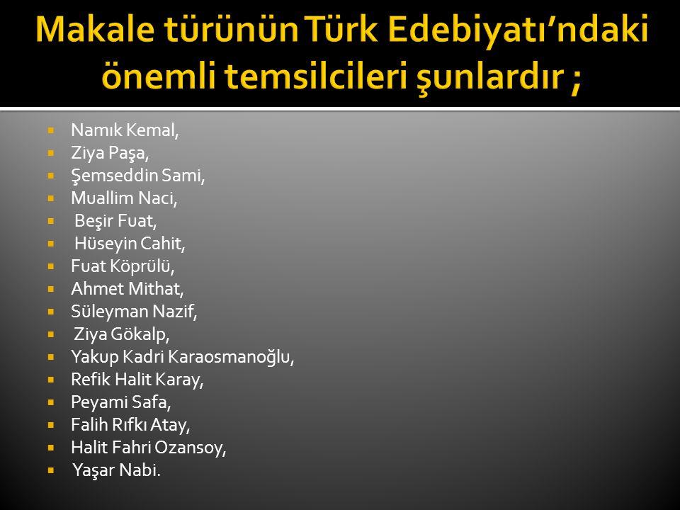 Makale türünün Türk Edebiyatı'ndaki önemli temsilcileri şunlardır ;