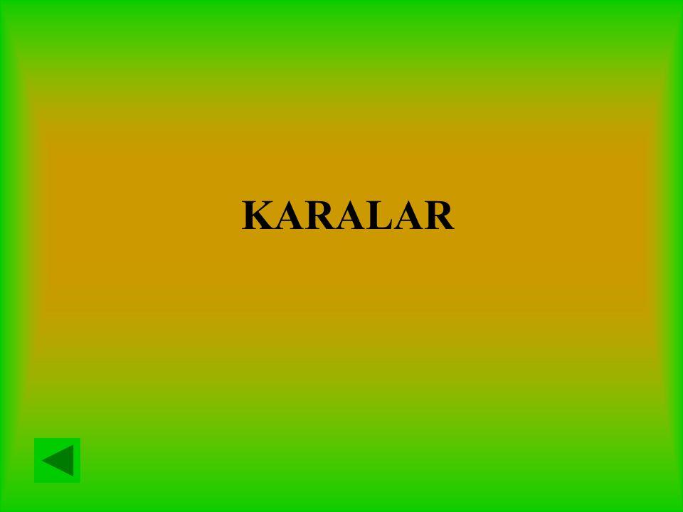 KARALAR