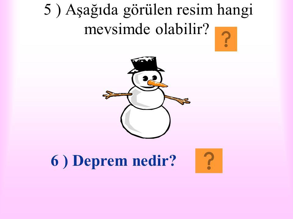 5 ) Aşağıda görülen resim hangi mevsimde olabilir