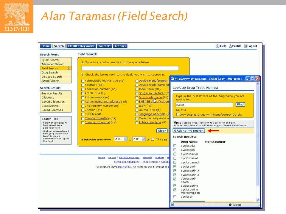 Alan Taraması (Field Search)