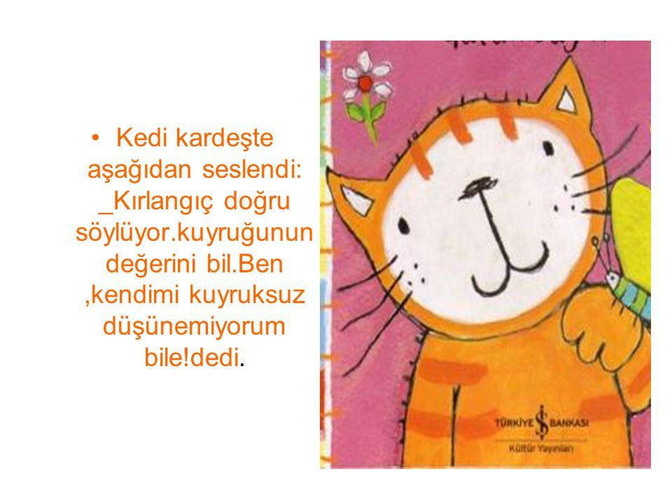 Kedi kardeşte aşağıdan seslendi: _Kırlangıç doğru söylüyor