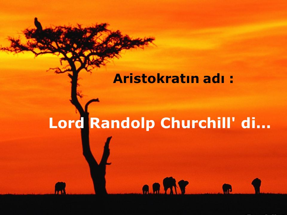 Lord Randolp Churchill di...