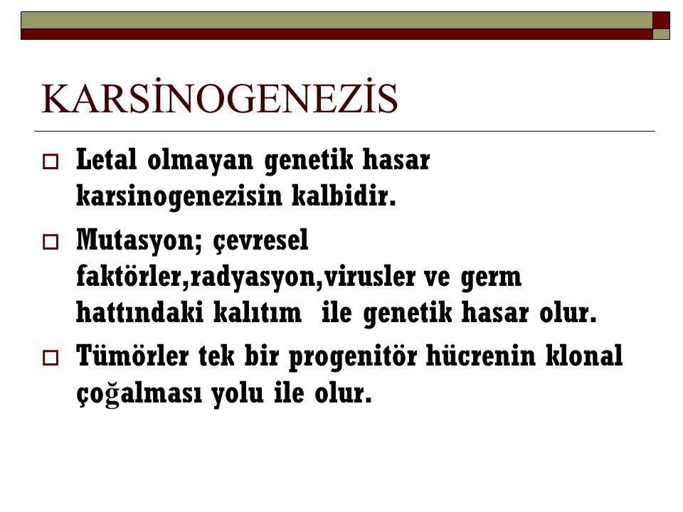 KARSİNOGENEZİS Letal olmayan genetik hasar karsinogenezisin kalbidir.