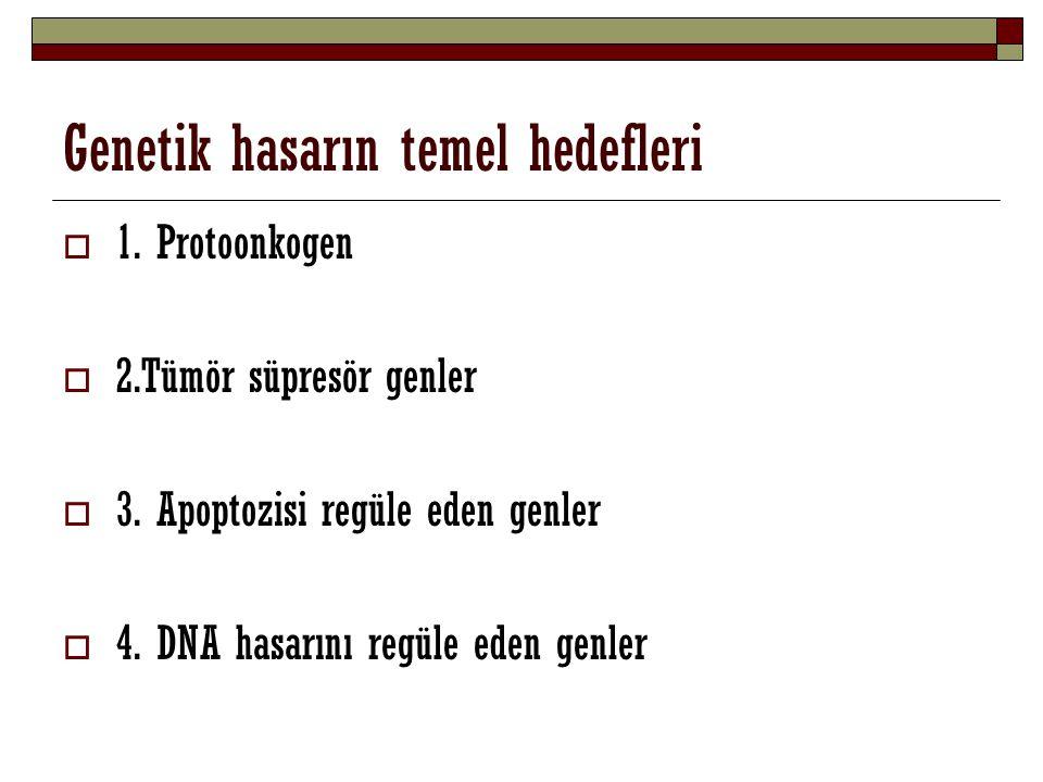 Genetik hasarın temel hedefleri