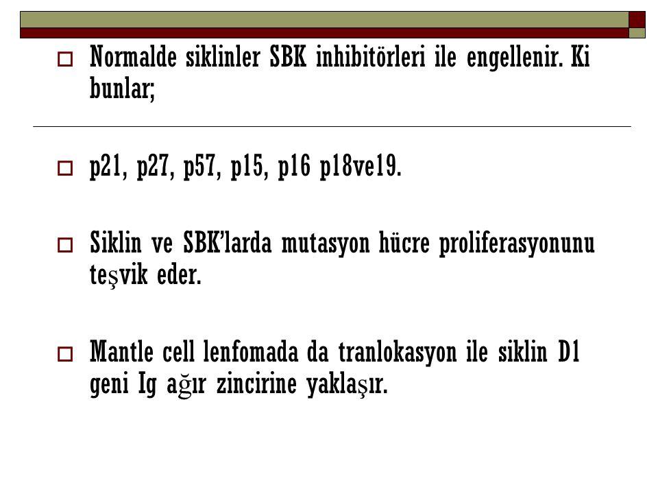 Normalde siklinler SBK inhibitörleri ile engellenir. Ki bunlar;