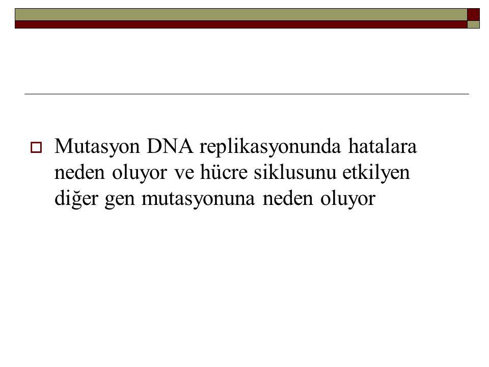 Mutasyon DNA replikasyonunda hatalara neden oluyor ve hücre siklusunu etkilyen diğer gen mutasyonuna neden oluyor