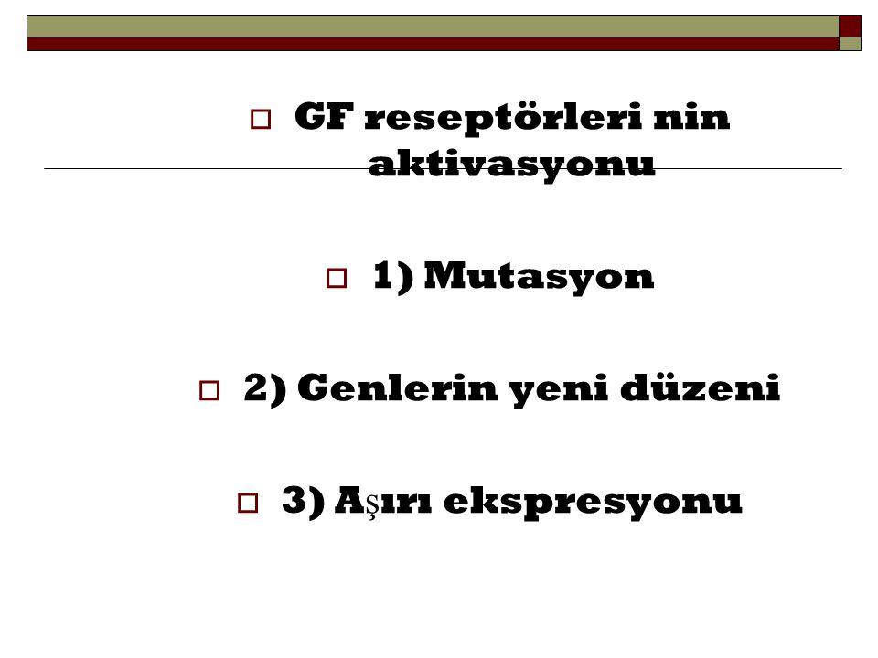 GF reseptörleri nin aktivasyonu