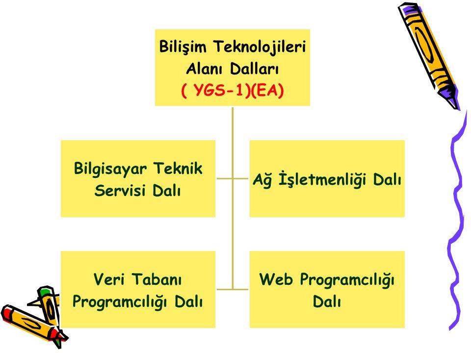 Bilişim Teknolojileri Alanı Dalları ( YGS-1)(EA)