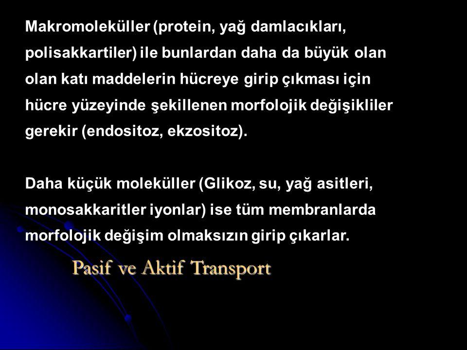 Pasif ve Aktif Transport