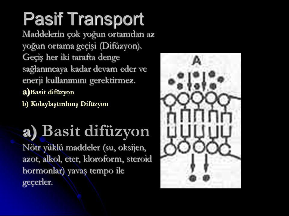 Pasif Transport