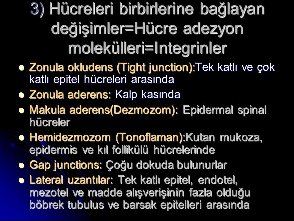 3) Hücreleri birbirlerine bağlayan değişimler=Hücre adezyon molekülleri=Integrinler