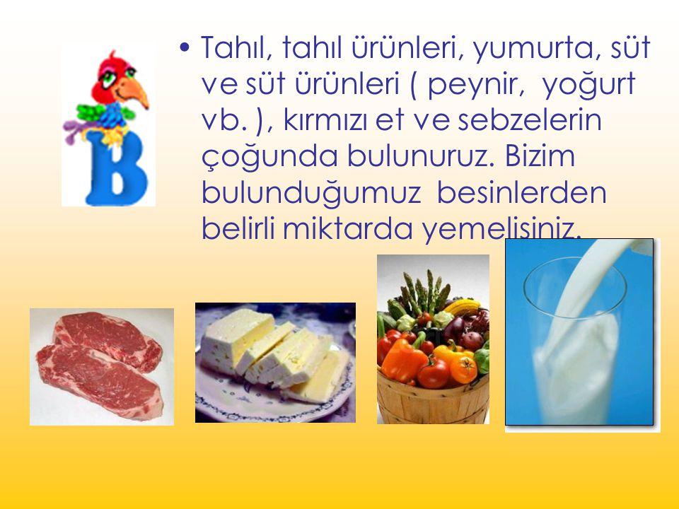 Tahıl, tahıl ürünleri, yumurta, süt ve süt ürünleri ( peynir, yoğurt vb.