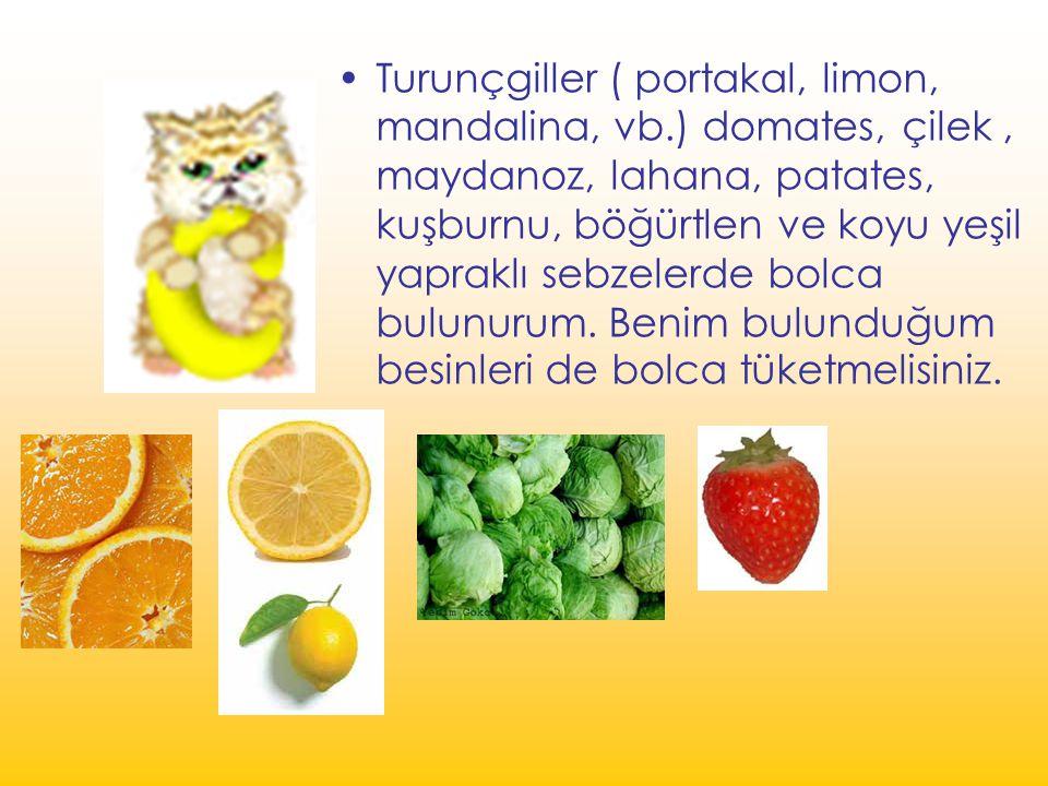Turunçgiller ( portakal, limon, mandalina, vb