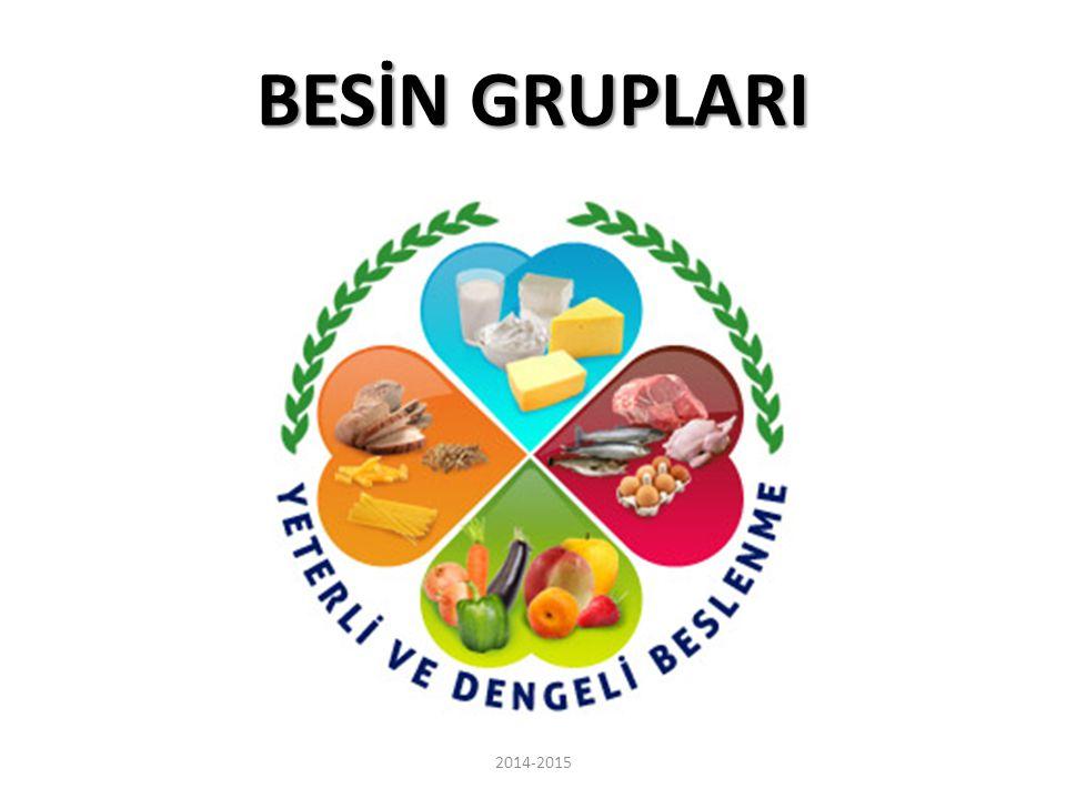 BESİN GRUPLARI 2014-2015