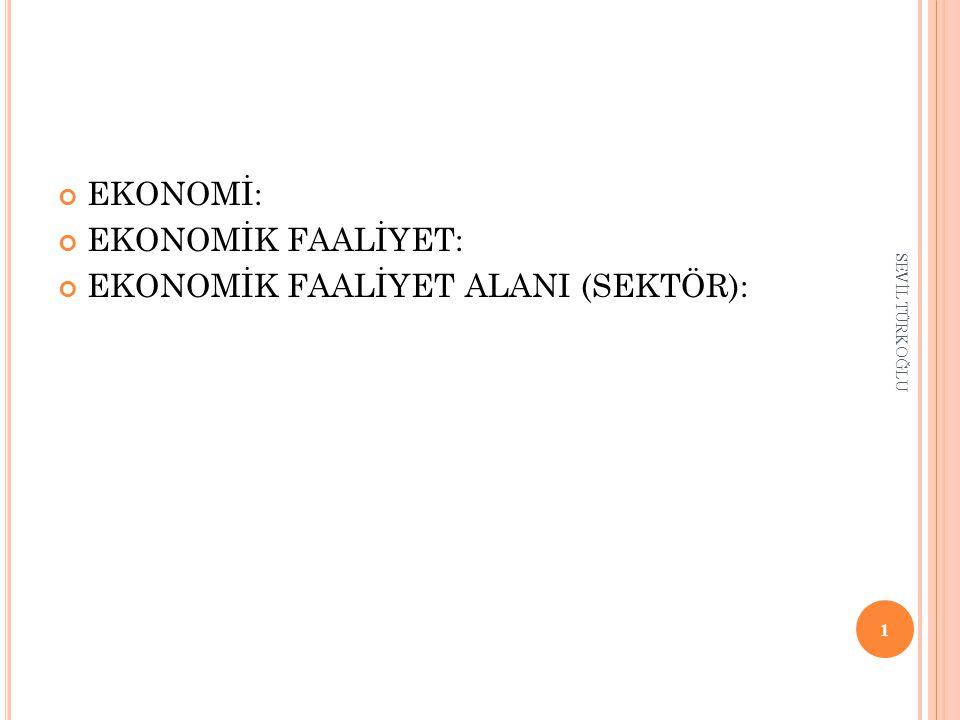 EKONOMİK FAALİYET ALANI (SEKTÖR):