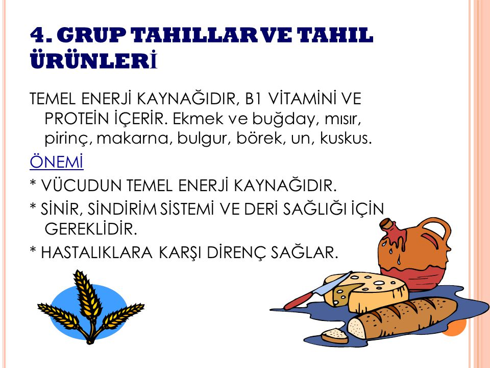 4. GRUP TAHILLAR VE TAHIL ÜRÜNLERİ