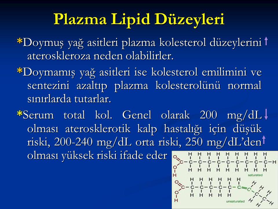 Plazma Lipid Düzeyleri