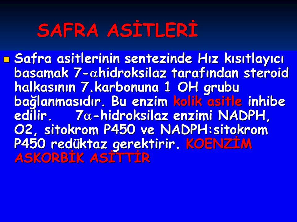 SAFRA ASİTLERİ
