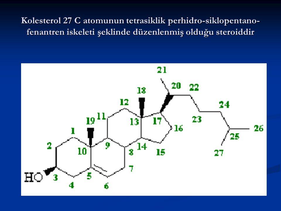Kolesterol 27 C atomunun tetrasiklik perhidro-siklopentano-fenantren iskeleti şeklinde düzenlenmiş olduğu steroiddir