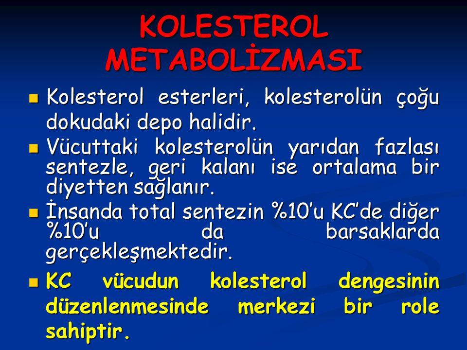 KOLESTEROL METABOLİZMASI