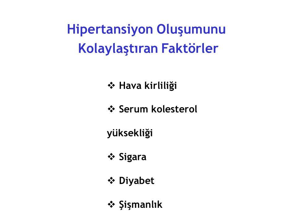 Hipertansiyon Oluşumunu Kolaylaştıran Faktörler