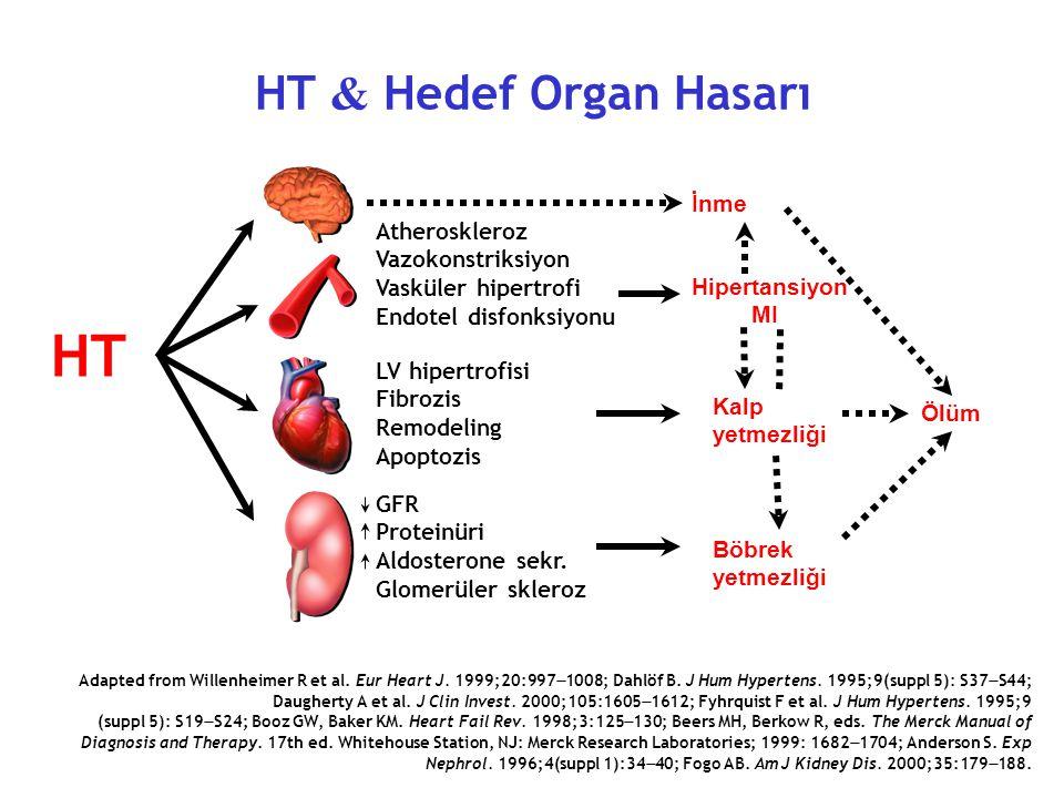 HT HT & Hedef Organ Hasarı İnme Atheroskleroz Vazokonstriksiyon
