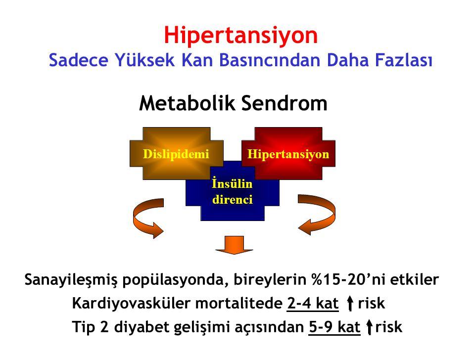 Hipertansiyon Sadece Yüksek Kan Basıncından Daha Fazlası