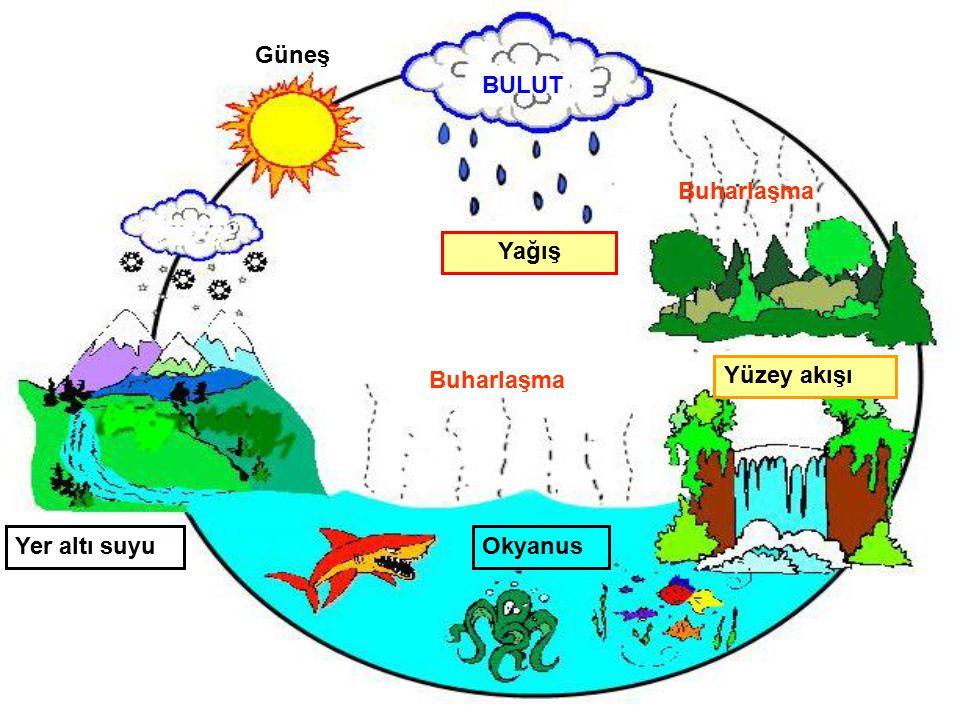 Güneş BULUT Buharlaşma Yağış Buharlaşma Yüzey akışı Yer altı suyu Okyanus