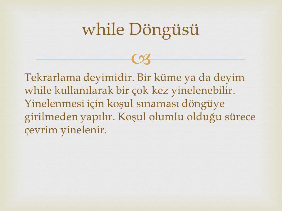 while Döngüsü