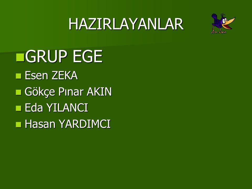 GRUP EGE HAZIRLAYANLAR Esen ZEKA Gökçe Pınar AKIN Eda YILANCI