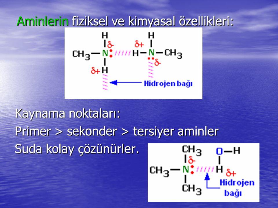 Aminlerin fiziksel ve kimyasal özellikleri: