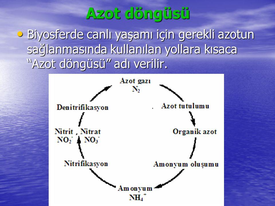 Azot döngüsü Biyosferde canlı yaşamı için gerekli azotun sağlanmasında kullanılan yollara kısaca Azot döngüsü adı verilir.