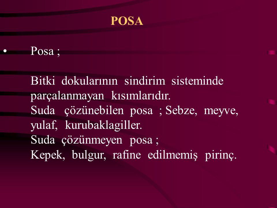 POSA Posa ; Bitki dokularının sindirim sisteminde. parçalanmayan kısımlarıdır.