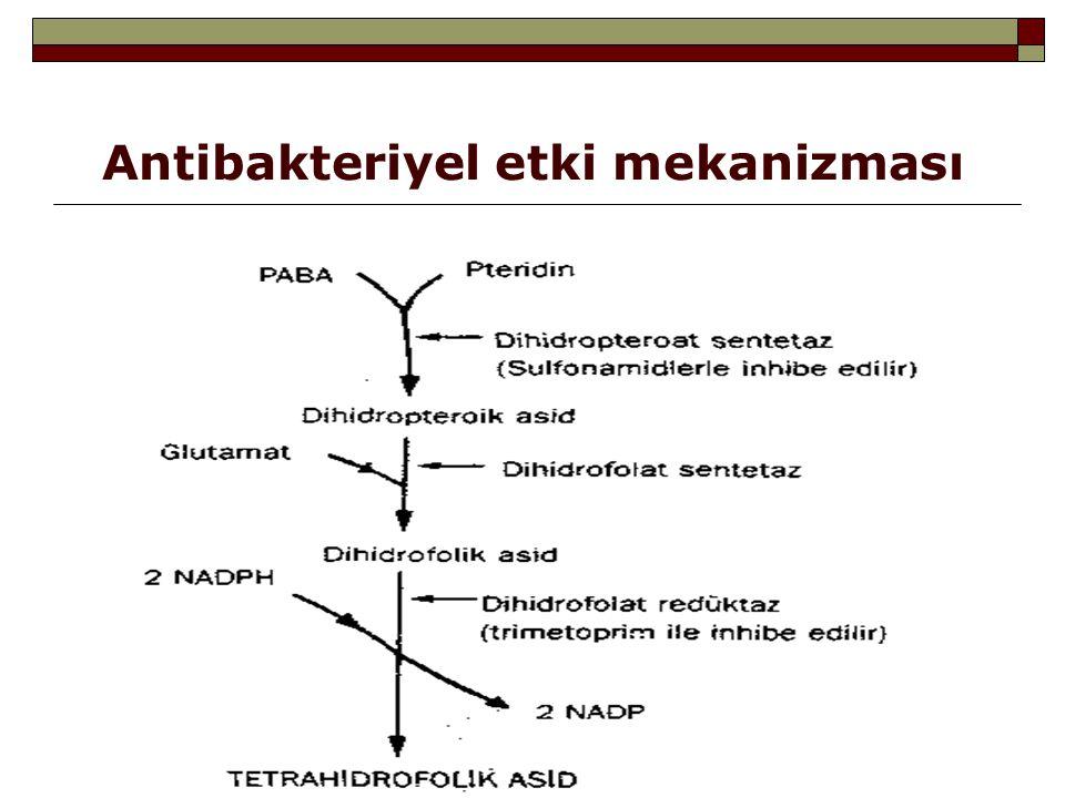 Antibakteriyel etki mekanizması
