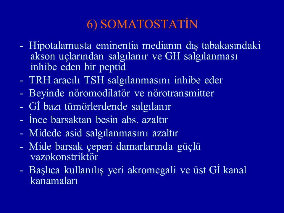 6) SOMATOSTATİN - Hipotalamusta eminentia medianın dış tabakasındaki akson uçlarından salgılanır ve GH salgılanması inhibe eden bir peptid.