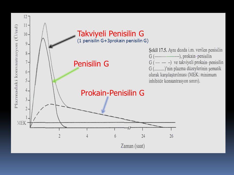 Takviyeli Penisilin G Penisilin G Prokain-Penisilin G