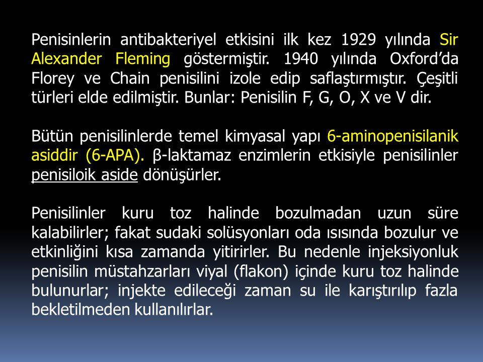 Penisinlerin antibakteriyel etkisini ilk kez 1929 yılında Sir Alexander Fleming göstermiştir. 1940 yılında Oxford'da Florey ve Chain penisilini izole edip saflaştırmıştır. Çeşitli türleri elde edilmiştir. Bunlar: Penisilin F, G, O, X ve V dir.
