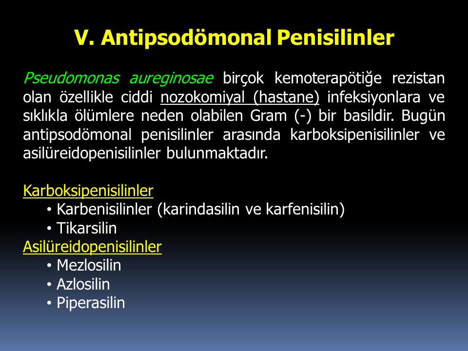 V. Antipsodömonal Penisilinler