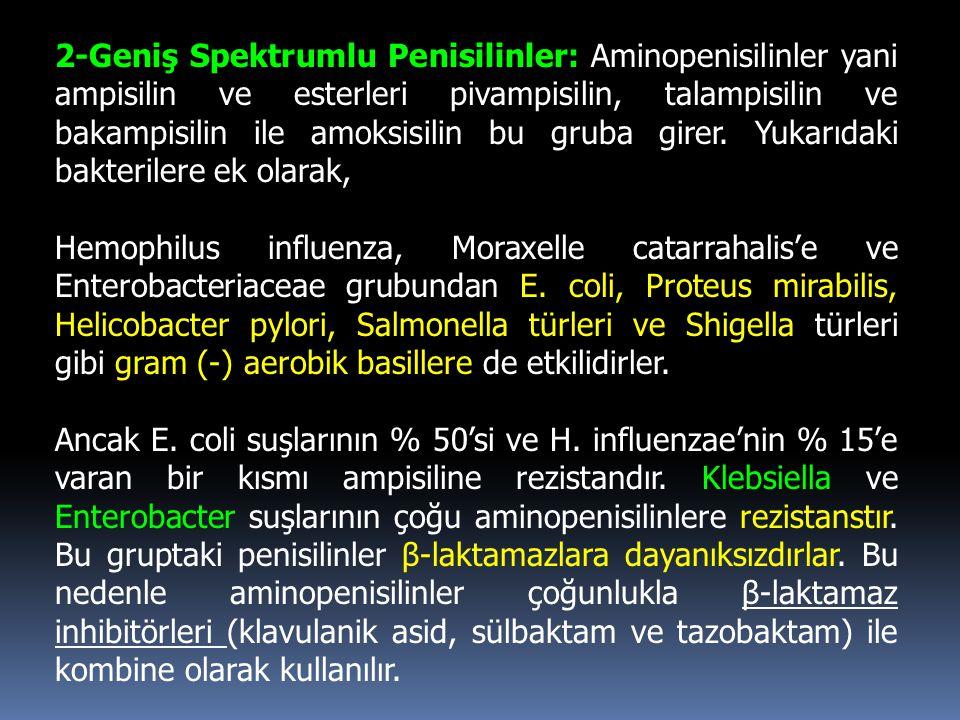2-Geniş Spektrumlu Penisilinler: Aminopenisilinler yani ampisilin ve esterleri pivampisilin, talampisilin ve bakampisilin ile amoksisilin bu gruba girer. Yukarıdaki bakterilere ek olarak,