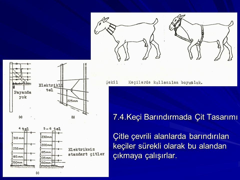 7.4.Keçi Barındırmada Çit Tasarımı