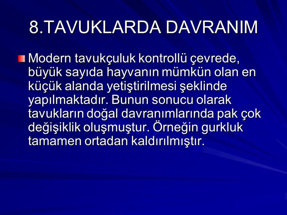 8.TAVUKLARDA DAVRANIM