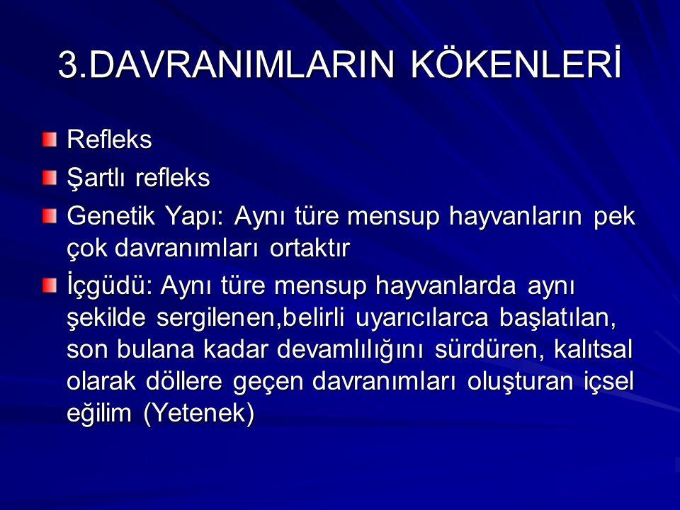 3.DAVRANIMLARIN KÖKENLERİ