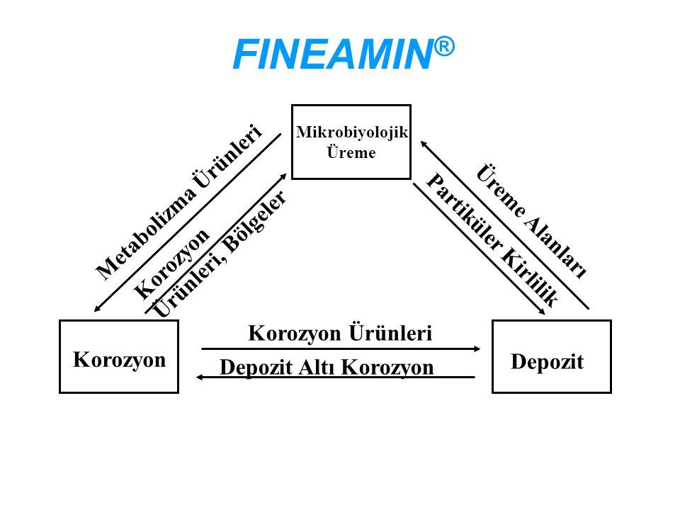 FINEAMIN® Metabolizma Ürünleri Üreme Alanları Partiküler Kirlilik