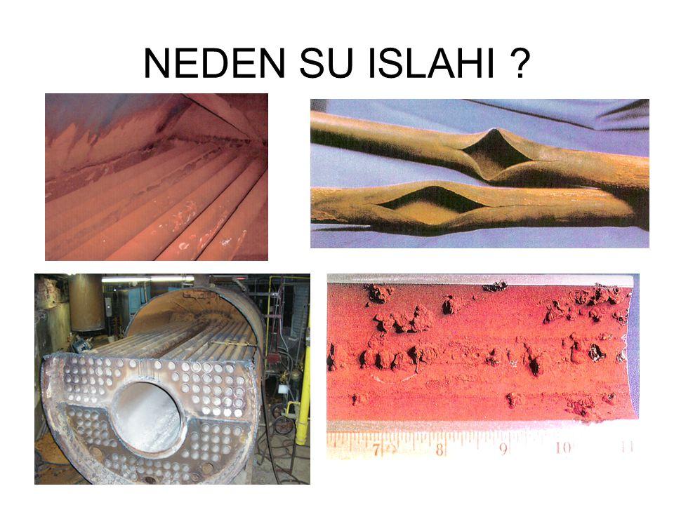 NEDEN SU ISLAHI